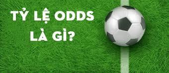 xem odds và fix